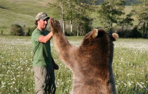 give-me-five-man-and-bear